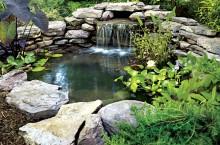 Создание водоема на участке