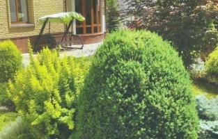сады со свободной планировкой