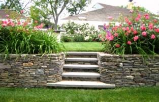 Где узнать про садоводство в подробностях?
