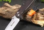 Как я выбирал складной нож Ganzo G7412-WD2-W